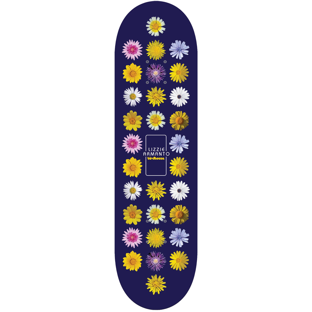 BH DECK FLORAL ARMANTO 7.3 MIN - Click to enlarge