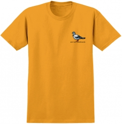 AH YT TEE LIL PIGEON GLD YM - Click for more info