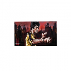 DGK STKR BRUCE LEE WARRIOR 10P - Click for more info