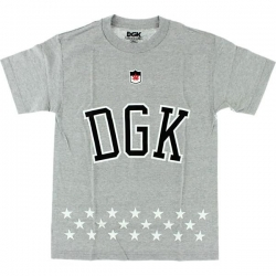 DGK TEE LIBERTY HTHR M - Click for more info