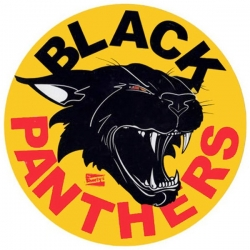 SHO STKR BLACK PANTHER 5PK - Click for more info
