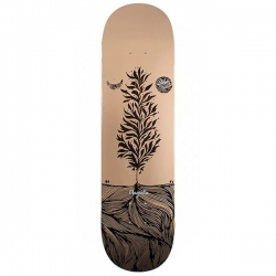 MGNTA DECK GLEN FOX ARTIST 8.3 - Click for more info