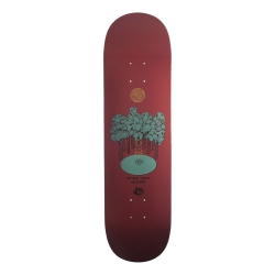 MGNTA DECK FORREST LANNON 8.4 - Click for more info