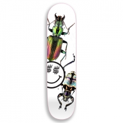 QSI DECK BUG WHITE 8.0 - Click for more info